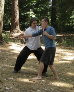 Teaching Bagua Zhang Strategies