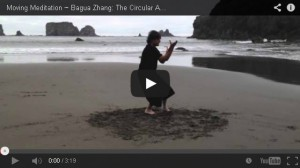 Moving Meditation - Bagua Zhang: The Circular Art of Transformation