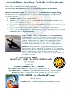Bagua Workshop at DragonArts 20Dec2015