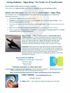 Bagua Workshop at Dreamclinic 12Dec2015